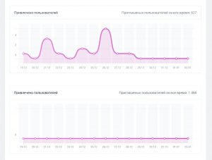 ВТопе - привлеченные пользователи в сервис